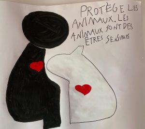 affiche Alek protection des animaux